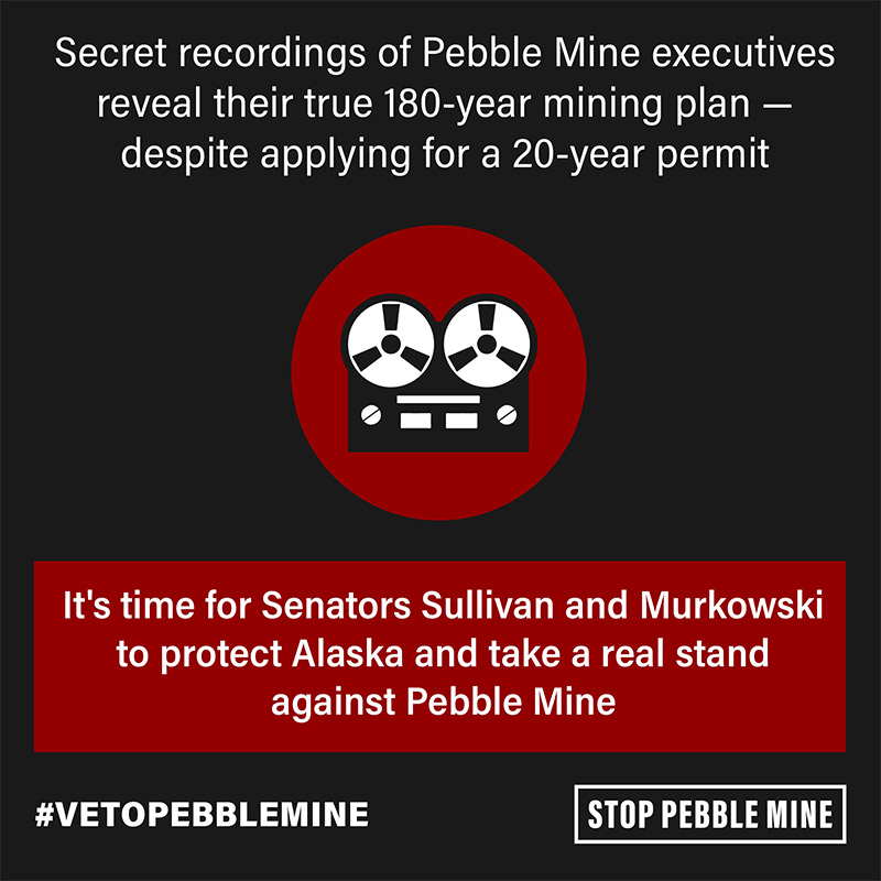Image of a tape recorder with text: Secret recordings of Pebble Mine executives reveal their true 180-year mining plan — despite applying for a 20-year permit. It's time for Senators Sullivan and Murkowski to protect Alaska and take a real stand against Pebble Mine. #VetoPebbleMine