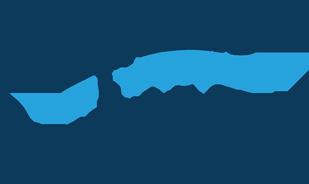 Salmon State logo